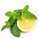 Menta y limón Fotografía de archivo