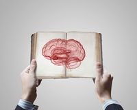 Mental ability. Close up of male hands holding opened book with brain picture Stock Image