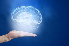 Mental health. Close up of human hand holding brain Stock Images