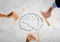 Mental health. Close up of people hands measuring brain with ruler Stock Photography