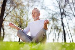 Pleasant aged man practicing yoga royalty free stock images