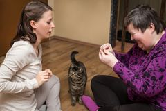 Mentally disables woman and nurse with a cat, animal assisted royalty free stock images