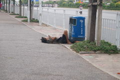 Mentally ill patients lie on the sidewalk. Stock Photography