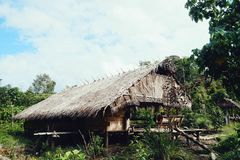 Mentawai island tribal jungle home royalty free stock photos