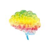 Mente del cervello umano illustrazione vettoriale
