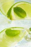 Menthe de lame et citron coupé photographie stock