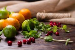 Menthe fraîche, baies et fruits Images libres de droits