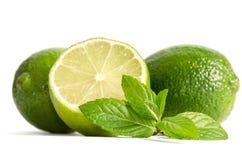 Menthe verte, deux chaux avec la moitié d'une chaux juteuse Images libres de droits