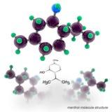 Menthol molecule structure. Stock Images