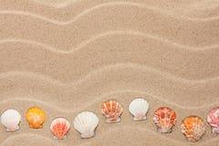 Mentira amarela do shell na areia Fotografia de Stock Royalty Free
