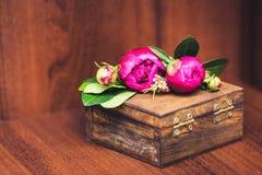 Mentira das peônias em um caixão de madeira Fotografia de Stock