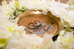 Mentira de dos anillos de bodas en treelake cerca de las flores Imagen de archivo libre de regalías