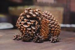 Mentira de los conos del pino en una tabla de madera Imagen de archivo