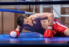 Mentira del boxeador eliminada en un anillo de boxeo Imagenes de archivo