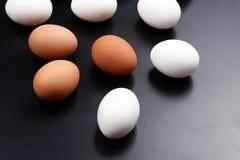 Mentira diferente dos ovos da galinha no fundo escuro Imagens de Stock