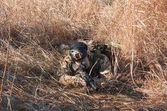 Mentira do soldado nos arbustos Imagens de Stock Royalty Free