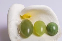 Mentira dos ovos do jade em uma flor branca Fotos de Stock