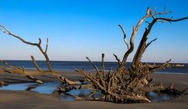 Mentira en la playa Imagenes de archivo