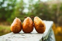 Mentira fresca da pera em uma tabela de madeira imagem de stock royalty free