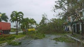 Mentira quebrada de los árboles delante de edificios después del tifón