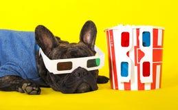 Mentiras del dogo franc?s del perro en los vidrios 3d con palomitas en el retrato amarillo del primer del fondo fotos de archivo