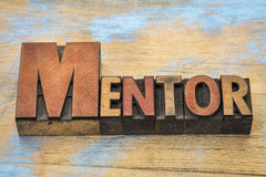 Mentor word in wood type Royalty Free Stock Photos