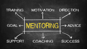 Mentoring concept flowchart. On blackboard Royalty Free Stock Photos