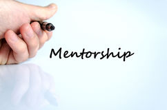 Mentorship text concept Royalty Free Stock Images