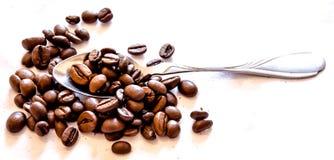 Mentre caffè bevente Immagine Stock Libera da Diritti