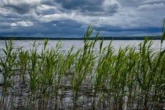 Mentre il lago è calmo, ma nuvole temporalesche porterà il vento e ci sarà un'alta onda Immagine Stock Libera da Diritti