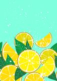 Menu background with lemons and leaves vector illustration