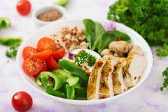 Menu da dieta Estilo de vida saudável Papa de aveia da farinha de aveia, faixa da galinha e legume fresco Fotos de Stock