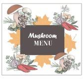 Menu del fungo Menu di autunno Illustrazione di vettore per progettazione di Th Immagine Stock Libera da Diritti