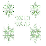 Menu do vegetariano e do vegetariano Eco, bio produtos de 100% ilustração do vetor