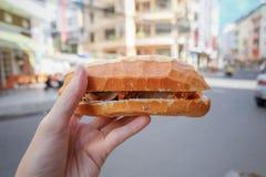 menu van baguette het Vietnamese sandwiches Royalty-vrije Stock Afbeeldingen
