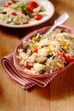 Menu vegetariano della quinoa Fotografia Stock Libera da Diritti