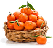 Meny tangerines in a basket Royalty Free Stock Photos