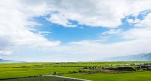 Menyuan län av Gansu sceniskt område royaltyfri fotografi