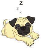 Menzogne del cane di sonno Immagini Stock Libere da Diritti