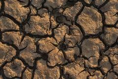Menzogne della terra al forno nel calore Il fondo del lago inaridito immagine stock