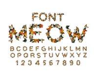 Meow πηγή Αλφάβητο γατών αιλουροειδές ABC επιστολές της Pet Κατοικίδια ζώα τυπο ελεύθερη απεικόνιση δικαιώματος