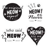 Meow που τίθεται από τέσσερα στοιχεία Στοκ εικόνα με δικαίωμα ελεύθερης χρήσης
