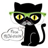 Meow -meow-stache Στοκ φωτογραφία με δικαίωμα ελεύθερης χρήσης