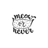Meow or never - hand drawn dancing lettering quote isolated on the white background. Fun brush ink inscription for photo. Overlays, greeting card or t-shirt Royalty Free Stock Photo