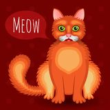 Meowing red cat! Vector illustration. royalty free stock images