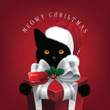 Meowy Christmas cat with big gift Royalty Free Stock Photo