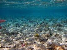 mer Photos libres de droits