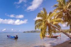 Mer, arbres de ciel et de noix de coco sur la plage, ciel bleu et mer Images stock