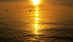 Mer avec le coucher du soleil Image libre de droits