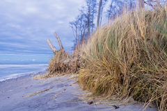 Mer baltique Photographie stock libre de droits